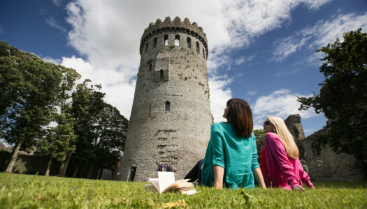 Tour of Nenagh Castle & market town