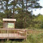 Gardens, Parks & Wildlife
