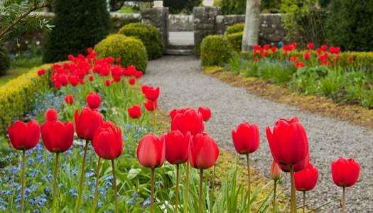 Riverrun Cottages -The Garden Rooms