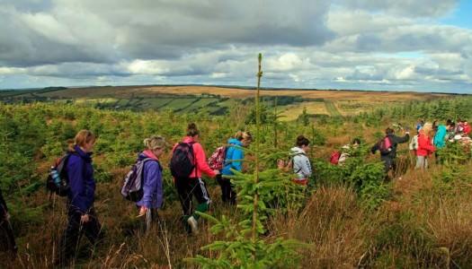 East Clare Walking Festival