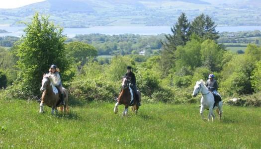 Go Horseriding