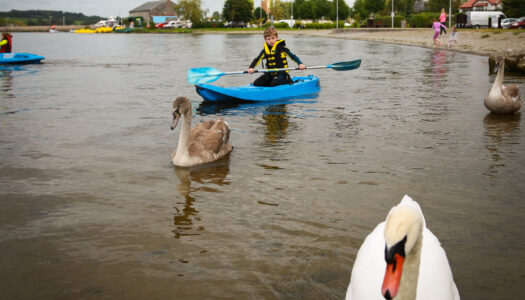 Lough Derg Aqua Splash – Peddle boat, kayak and sup rental