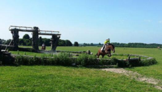 Dartfield Equestrian Centre