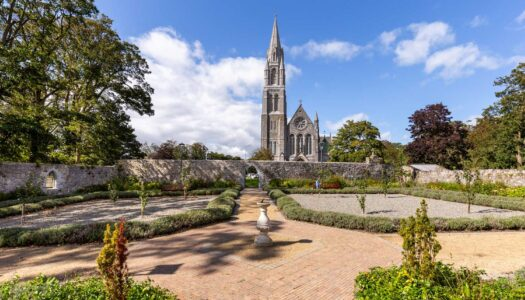 Week 5 – The Nenagh Classic Cycle